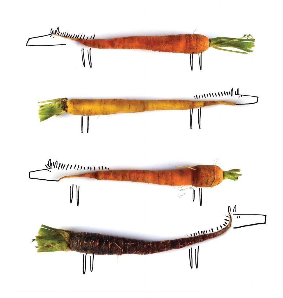 carrot horses-JuanaMedina